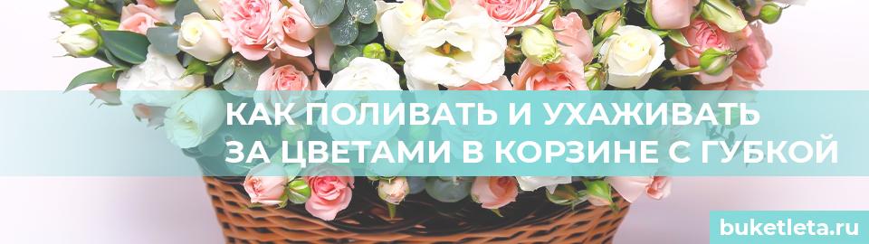 Цветы в корзине с губкой