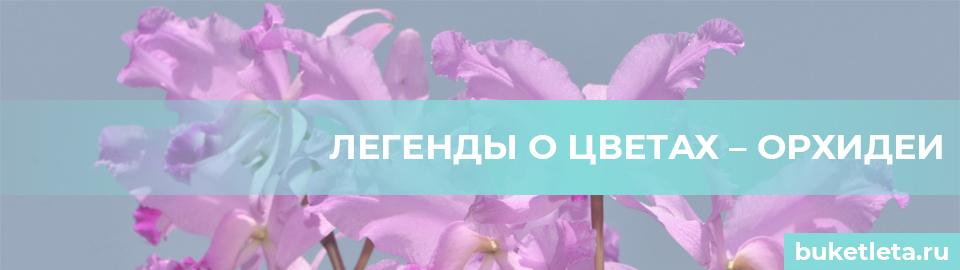 Легенды о цветах орхидеи
