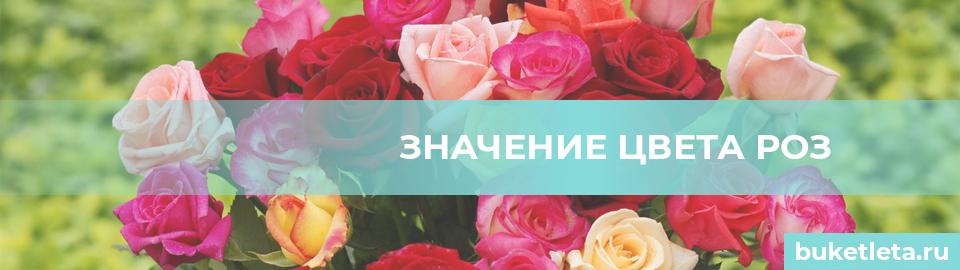 Значение цвета роз